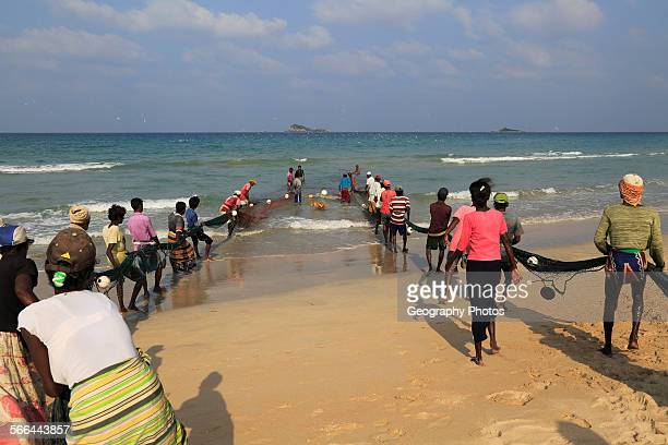 Traditional fishing hauling nets Nilavelli beach near Trincomalee Eastern province Sri Lanka Asia