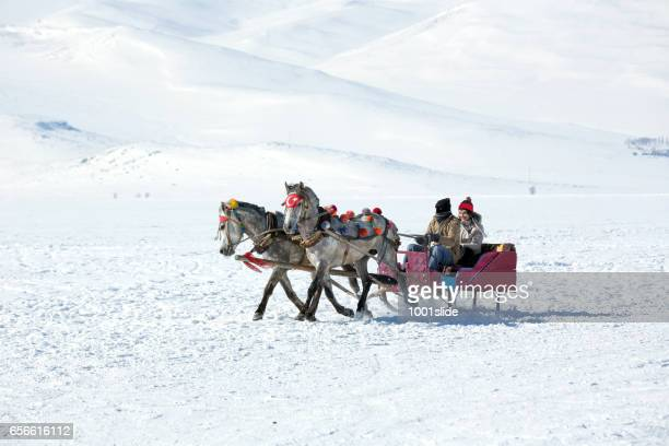 Traditional horse transport with sleigh and woman