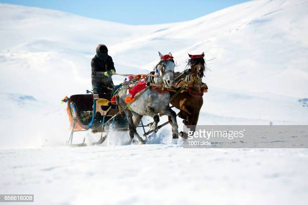 Traditional horse transport with sleigh