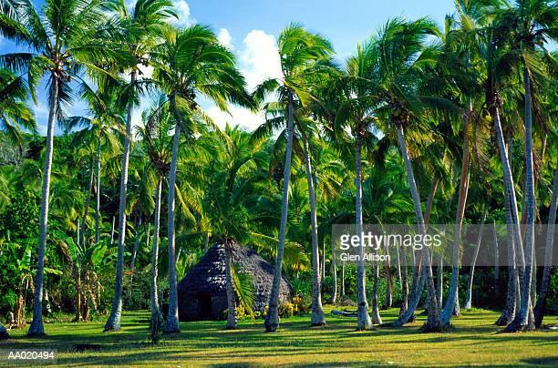 Traditional Hut, Lifou Island, New Caledonia