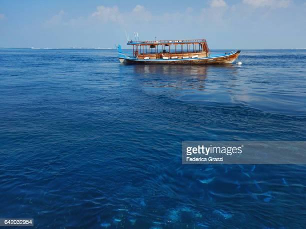 Traditional Maldivian Boat (Dhoni) And Blue Fusilier Fish