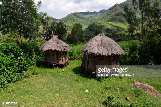 Traditional mud huts in the Elgeyo Escarpment
