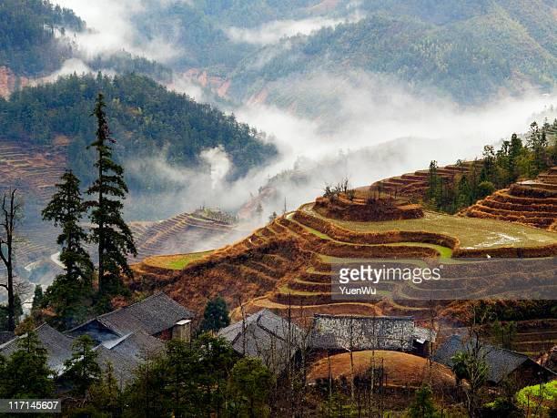 Toit traditionnel et les champs de riz en terrasse dans la brume