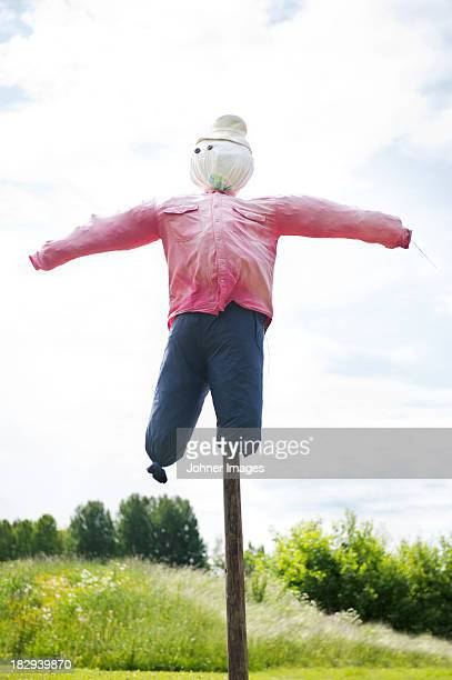 Traditional scarecrow in field
