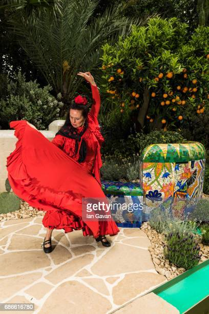A traditional Spanish flamenco dancer performs at the RHS Chelsea Flower Show on May 22 2017 in London United Kingdom Created by multi award winning...