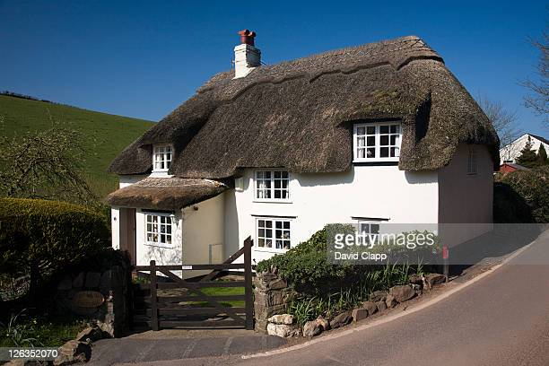 A traditional thatched cottage near Galmpton at Hope Cove, Devon.