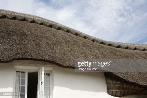 Traditional thatched Devonshire cottage
