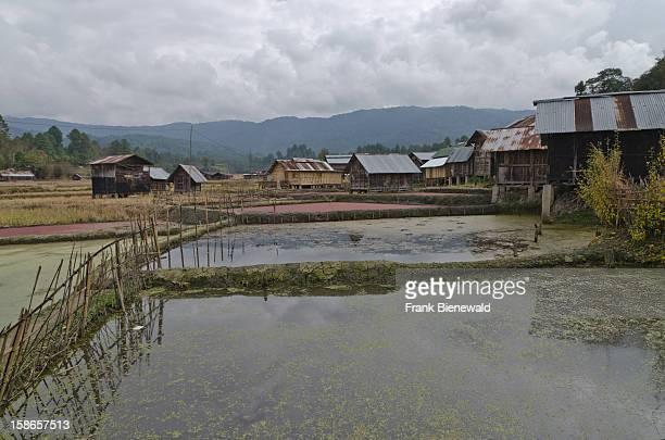 Traditional village Hong of the ApataniTribe in the hills of Ziro area