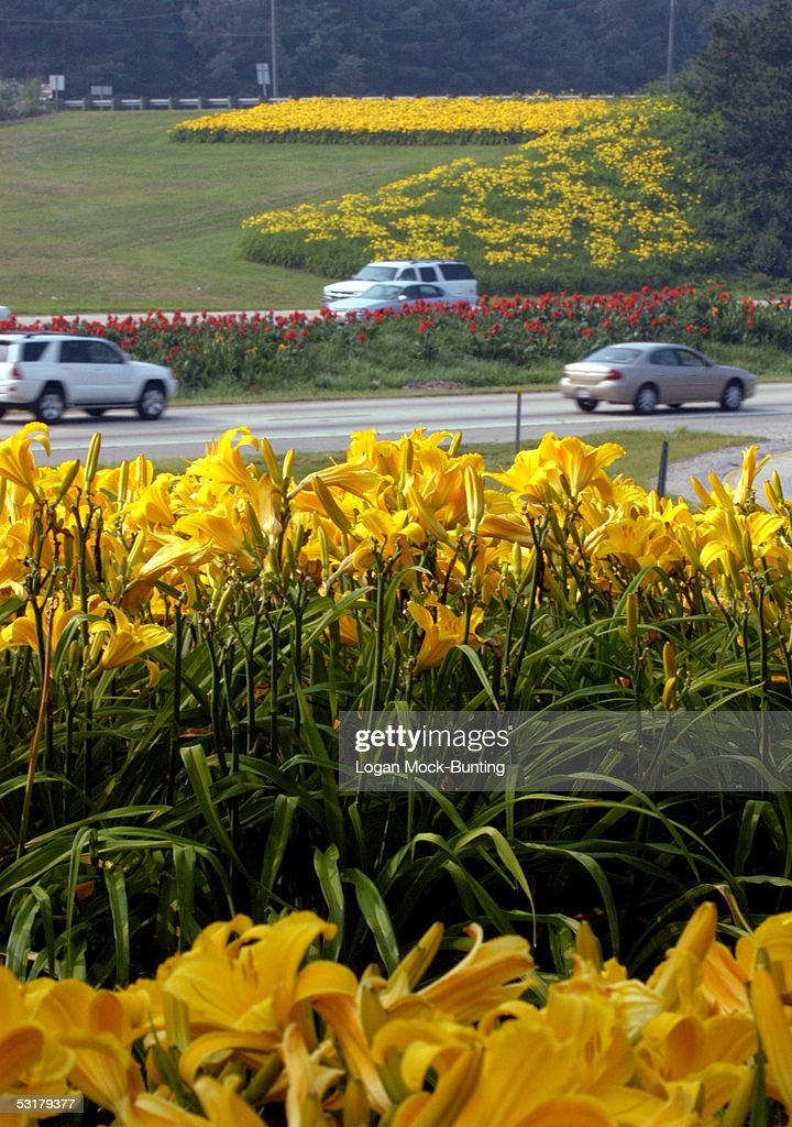 Traffic is seen on Interstate 40 which connects such cities as Charlotte and Raleigh to many beaches on the east coast of the state July 1 2005 in...