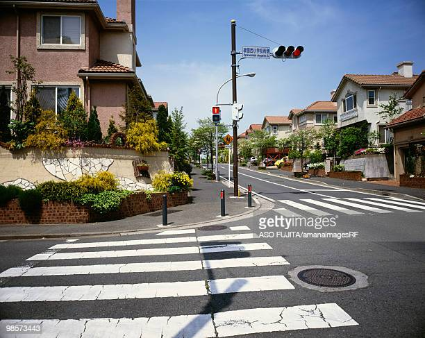 Traffic light and crosswalk in residential district, Ryokuentoshi, Kanagawa Prefecture, Japan