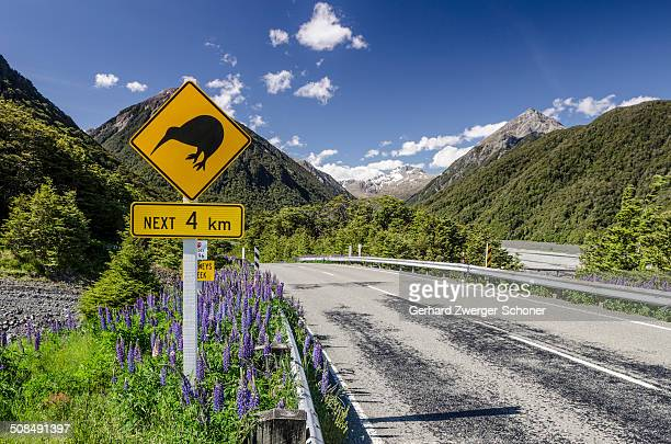 Traffic sign warning of kiwis on the next four kilometres of the country road, driving on the left, Arthur's Pass Road, South Island, New Zealand, Oceania