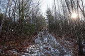A trail is seen at Prospect Hill Park the site of the former Prospect Hill ski area in Waltham Mass on January 13 2015