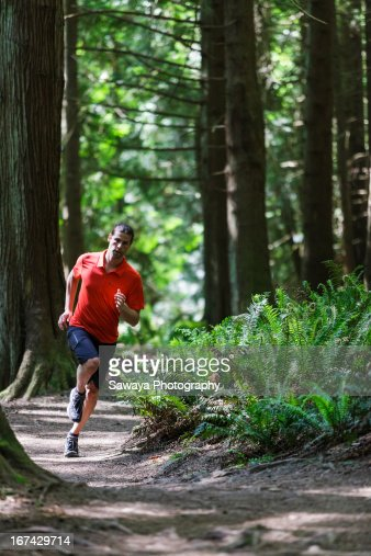 Trail running in evergreen forest : Stock Photo
