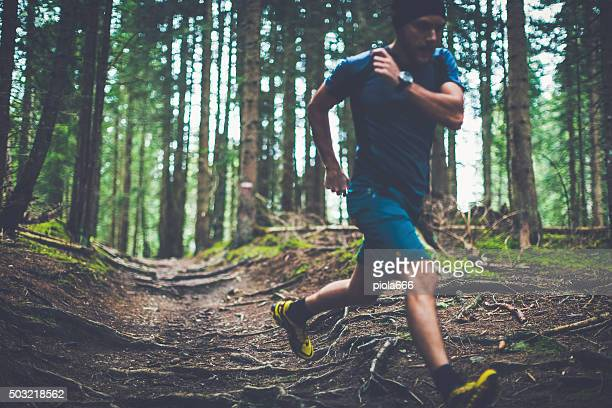 Trail running in the forest
