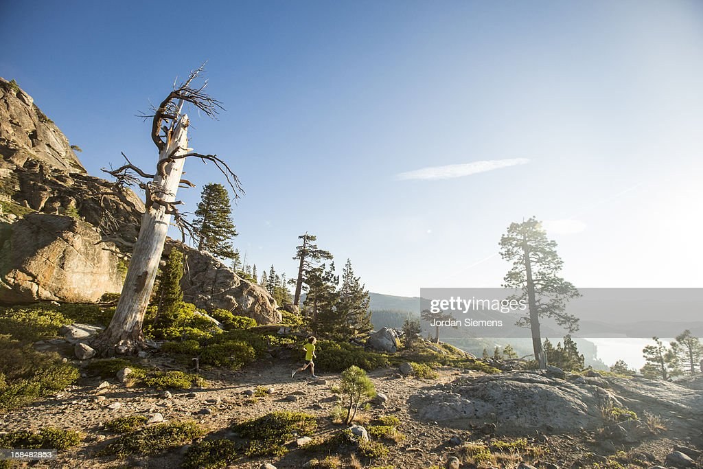 Trail Running in the Sierra Mountains. : Stock Photo