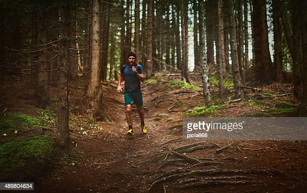 Sentier de jogging dans la forêt.