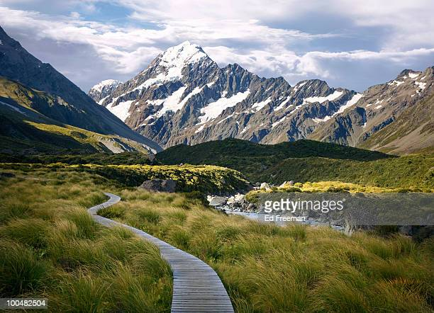 Trail to Mt. Cook, South Island, New Zealand