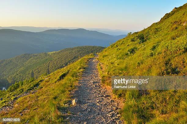 Trail too Mountain Top