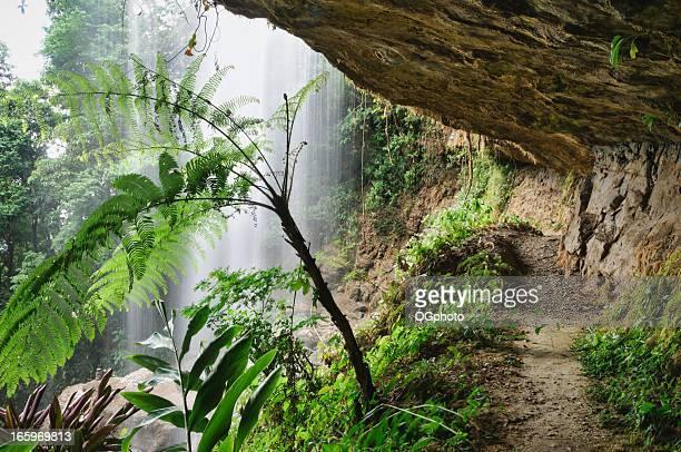Trail underneath a tropical waterfall