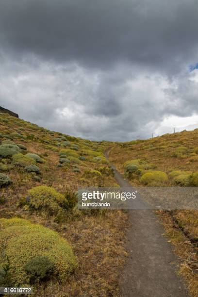 A trail winds off in the  bright morning sun in the patagonian andes in Argentinian Patagonia, South America