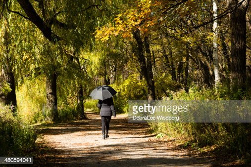 Trail with Autumn Colour : Stock Photo