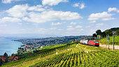Running train at Lavaux Vineyard Terraces hiking trail at Lake Geneva and Alps, Lavaux-Oron district, Switzerland