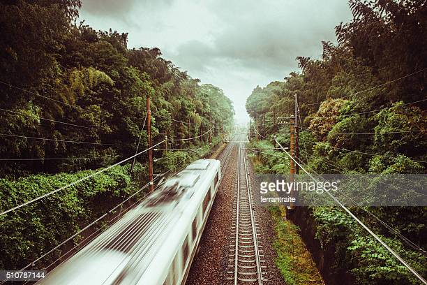 Train Crossing Kyoto Bamboo Forest