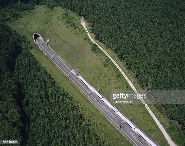 Train near tunnel