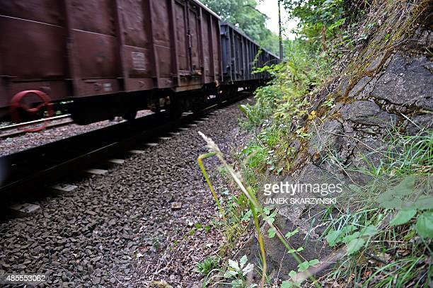 A train passes by the site where a Nazi gold train is believed to be hidden in the city of Walbrzych Poland on August 28 2015 Poland's Deputy Culture...
