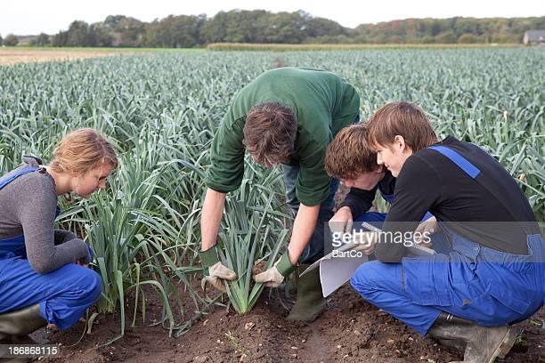 Aprendiz de Agricultura