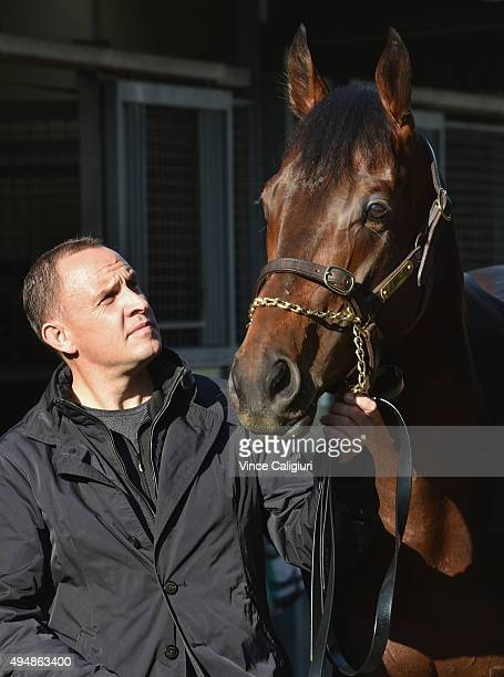 Trainer Chris Waller poses with Melbourne Cup runner Preferment after a trackwork session at Flemington Racecourse on October 30 2015 in Melbourne...