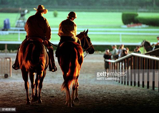 Trainer D Wayne Lukas leads Kentucky Derby and Preakness winner ridden by Joanne McNamara out onto the track for a morning run 04 June at Belmont...
