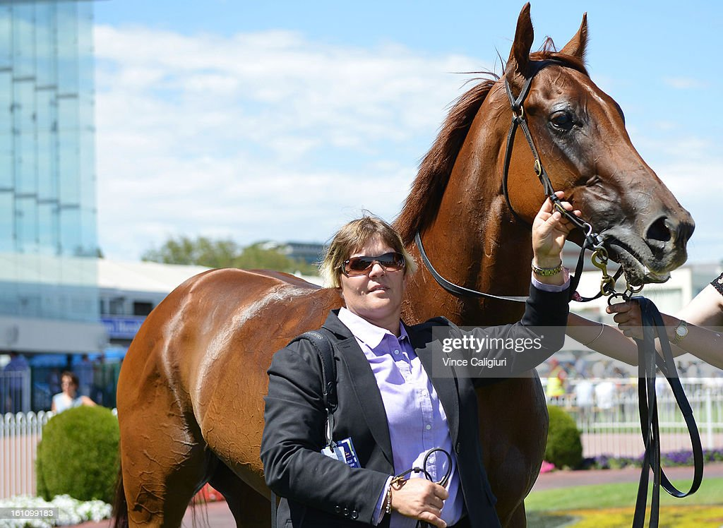 Trainer Desleigh Forster with Adebisi after winning the Schweppes Rubiton Stakes during Melbourne Racing at Caulfield Racecourse on February 9, 2013 in Melbourne, Australia.
