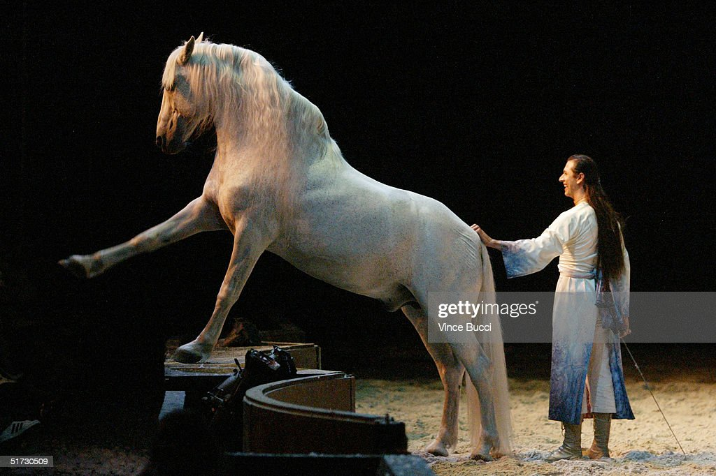 Trainer Frederic Pignon and horse perform during opening night of 'Cavalia: A Magical Encounter Between Horse and Man' on Novemebr 10, 2004 in Santa Monica, California.