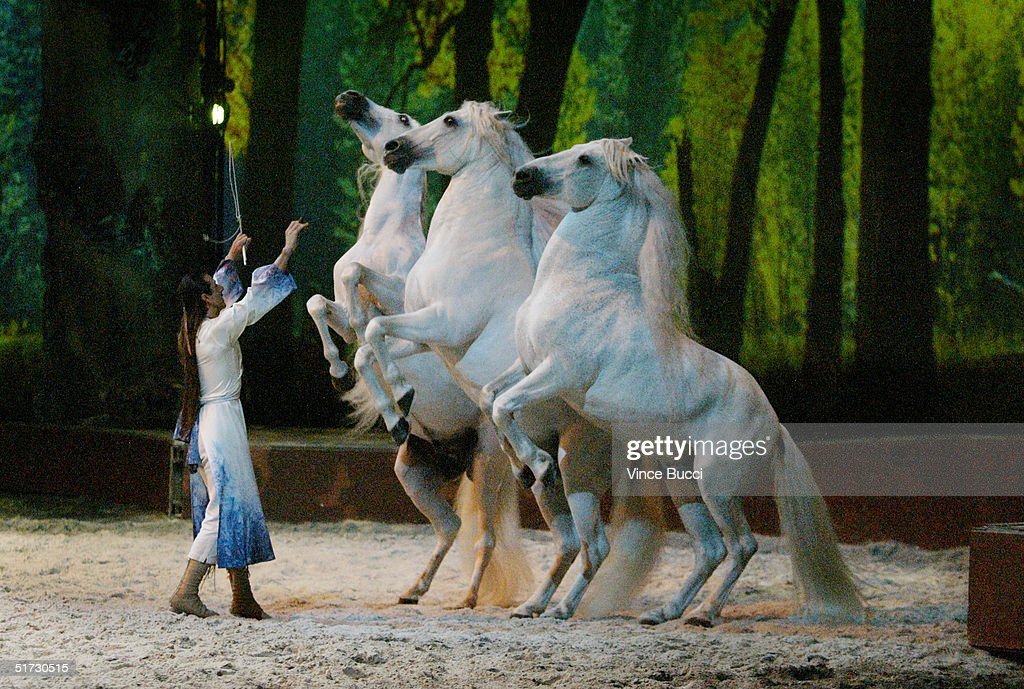 Trainer Frederic Pignon and horses perform during opening night of 'Cavalia: A Magical Encounter Between Horse and Man' on Novemebr 10, 2004 in Santa Monica, California.