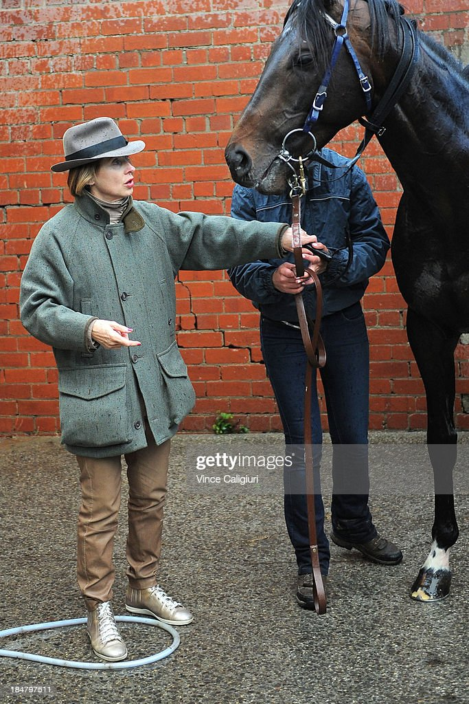 Trainer <a gi-track='captionPersonalityLinkClicked' href=/galleries/search?phrase=Gai+Waterhouse&family=editorial&specificpeople=239456 ng-click='$event.stopPropagation()'>Gai Waterhouse</a> with Fiorente after a trackwork session at Moonee Valley Racecourse on October 17, 2013 in Melbourne, Australia.