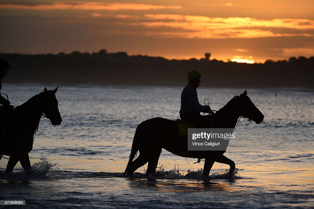 Trainer Matthew Williams riding his horse at Lady Bay beach ahead of day two of the Warrnambool Racing Carnival on May 04, 2016 in Warrnambool, Victoria. Riders gallop the horses up and down the foreshore before cooling the horses in the ocean.