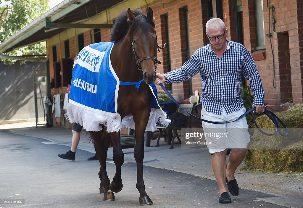 Trainer Mick Price parading Blue Diamond chance Flying Artie during the launch of 'Relaxed Racing' carnival at Caulfield Racecourse on February 11, 2016 in Melbourne, Australia.
