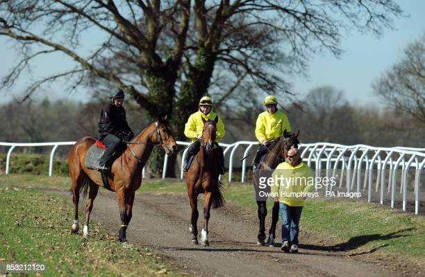 Trainer Richard Fahey leads down his three Lincoln runners Gabrial's Kaka ridden by Barry McHugh Hi There ridden by Tony Hamilton and Brae Hill...