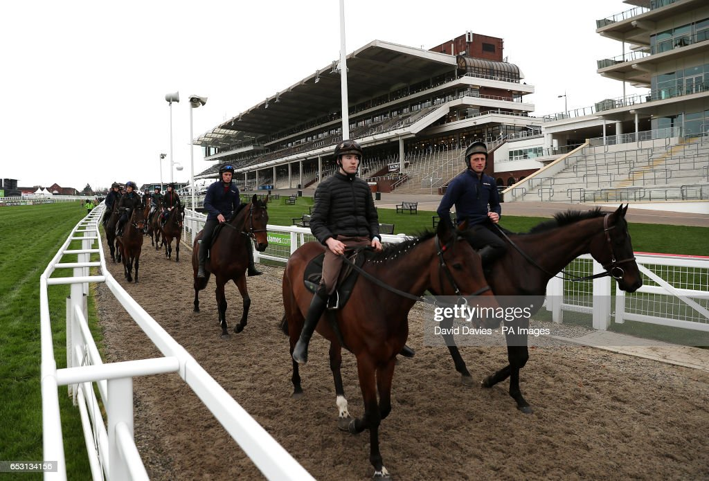 Trainer Willie Mullins' horses make their way to the gallops during Champion Day of the 2017 Cheltenham Festival at Cheltenham Racecourse.