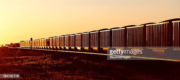Trainload von black gold bei Sonnenuntergang
