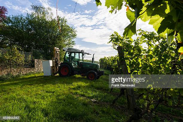 A traktor standing in the large vineyards of the winery 'Juliusspital Wuerzburg'