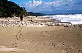 Tramper walking along Bluecliffs Beach on Hump Ridge Track.