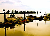 Tranquil dock in the muddy Fraser River