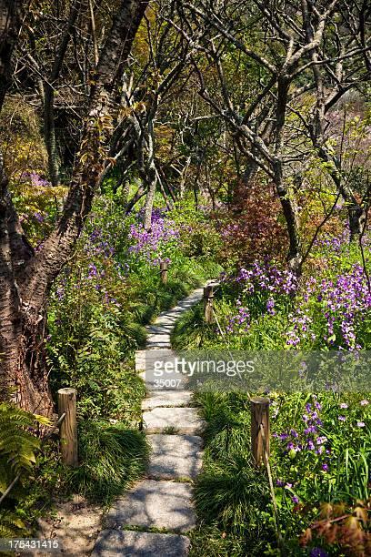 静かな庭園の通路