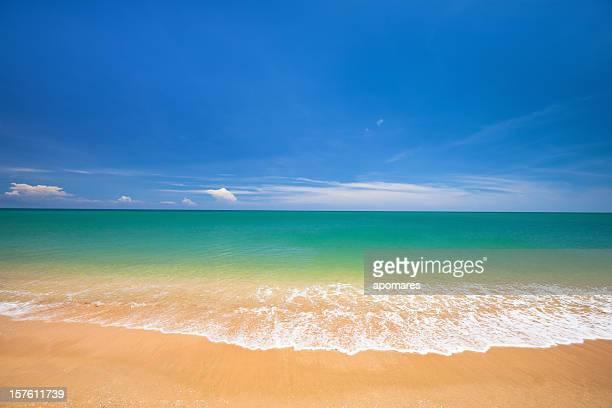 Scène tranquille Tropical de plage de sable doré