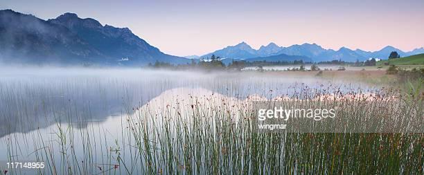 Ruhige Szene mit Schilf am lake banwaldsee, Bayern, Deutschland