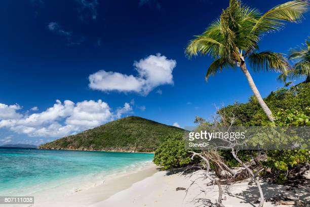 Tranquil Shore of a Beautiful Caribbean Bay with Anchored Sailboats and Palm Trees