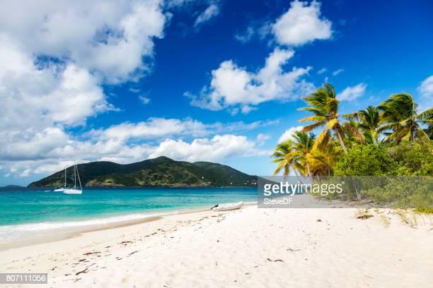 Rustige oever van een prachtige baai van het Caribisch gebied met verankerde zeilboten en palmbomen