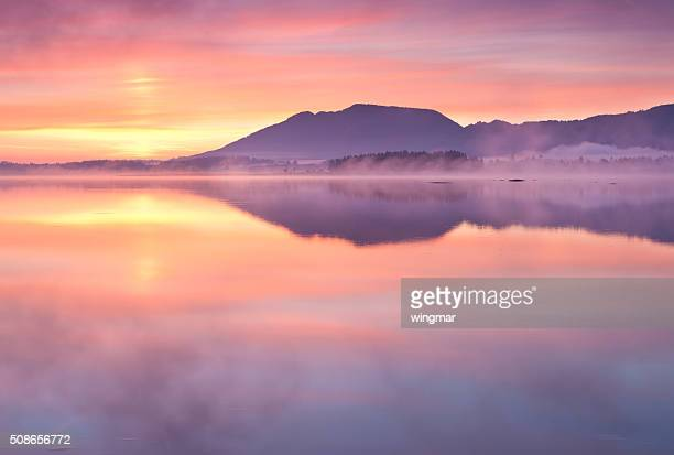 tranquil sunrise at lake forggensee in bavaria - germany